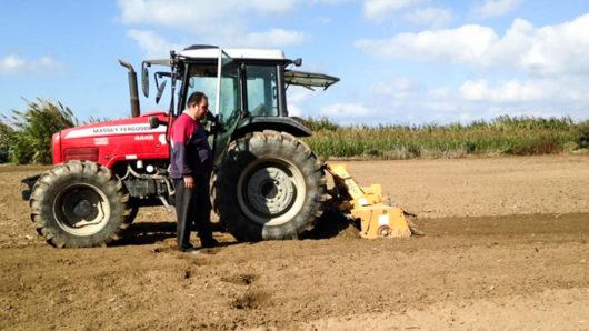 Την Τετάρτη η προκαταβολή της ενιαίας ενίσχυσης στους αγρότες