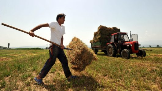 αγρότης ΕΛ.Γ.Α.