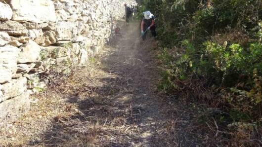Εθελοντικός καθαρισμός των μονοπατιών της Αμοργού από τον Ε.Π.Ο.Σ Φυλής