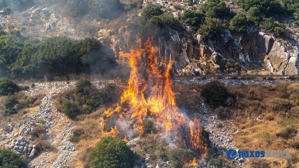 φωτιά Σκαδό