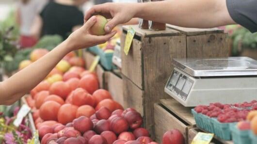 Μέχρι τις 25 Μαρτίου η διαδικασία επιλογής των νέων αδειούχων παραγωγών πωλητών