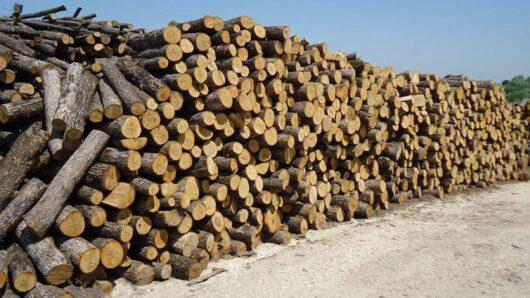 Σταϊκούρας: Επίδομα θέρμανσης και για φυσικό αέριο, υγραέριο, καυσόξυλα, βιομάζα