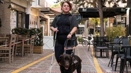 Μόλις 22 σκύλοι οδηγοί και 9 εκπαιδευτές κινητικότητας για 16.000 τυφλούς